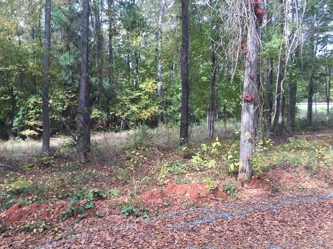 Property for sale at FM 449 @ Richard Thomas Rd., Hallsville,  TX 75650